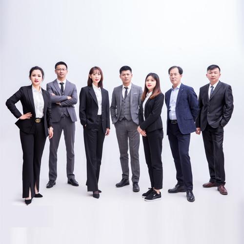 专业律师团队